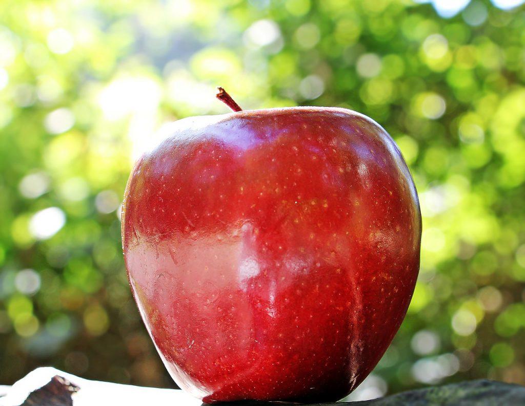 maçã é bom