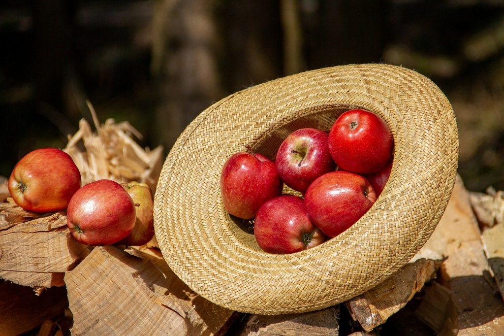 maçã prende o intestino